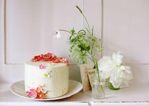 Sarah_magid_cake