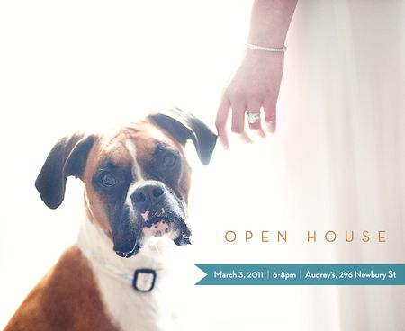 PetsAndWeddings