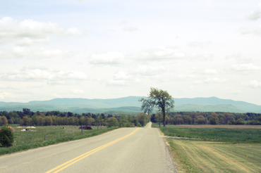 Country_road_4